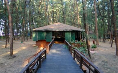 log-hut-249224_1280